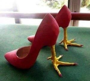 Ergots Chaussures Coq