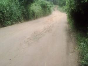 La voie principale de Bogoboua à Zikisso Photo : LÉGOU Frédéric